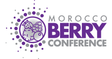 Morocco Berry Conference