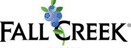 Fall Creek Europe logo_vector on white